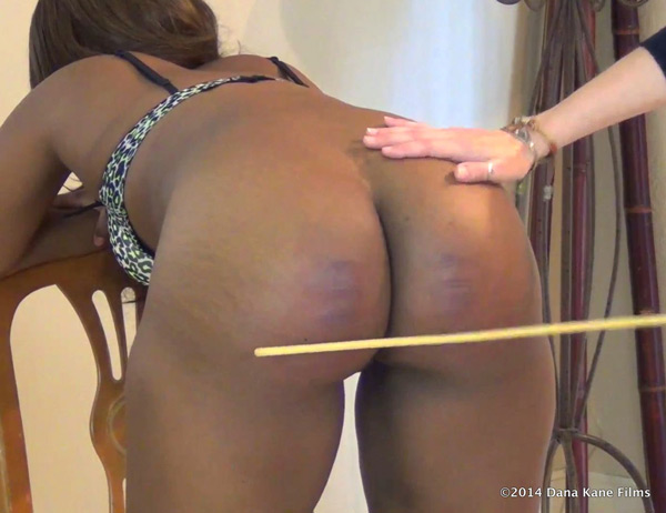 Erica's big brown booty gets caned as she bends over the straight-backed chair